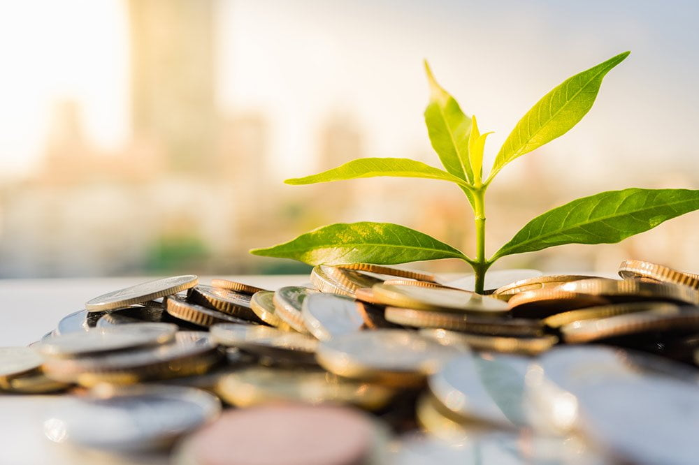 Alternative Investment Income Options | Diversified Income Funds | Trilogy Funds Australia